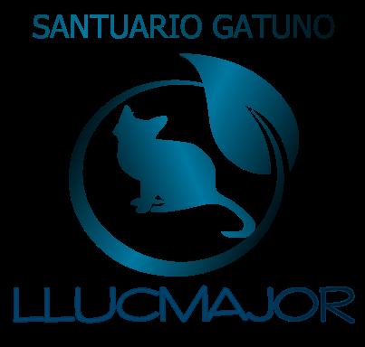 Santuario Gatuno LLucmajor